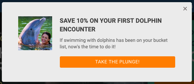 DOL_Dolphins-plus_Lead-Form-Popup